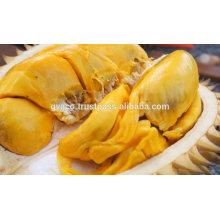 fresh durian from vietnam 2017