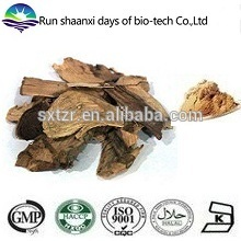 100% Pure Akebia Caulis Extract / Akebia Stem Extract Powder
