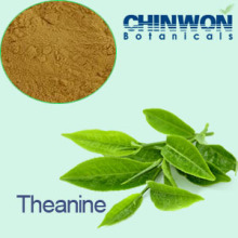 8. Natural Source Green Tea Extract L-Theanine