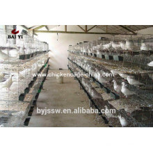 Best selling pigeon cage for breeding