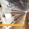 Geflügelverarbeitungsanlagen mit Hühnerfutter und Tränken