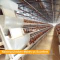 Design automatisch eine Art Huhn Ei Schicht Käfige