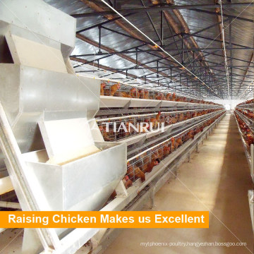 High-quality Type Automatic Poultry Farm Layer Cages