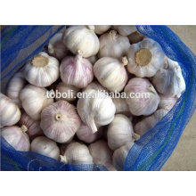 6cm Fresh Pure White Garlic
