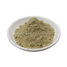polvo de hongos shiitake secos lentinus edodes en polvo