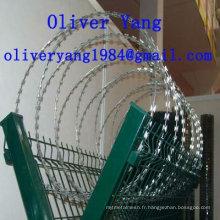panneau de clôture de fil de fer barbelé galvanisé revêtu par PVC de concertina avec 3D-plis