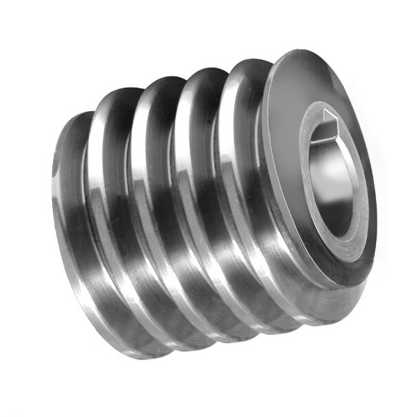 Steel Worm Gear and Wheel for Elevator Gearbox