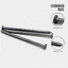Profesional de carbono Q195 Tallas de clavo comunes de acero para el clavo
