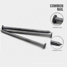 Professional Carbon Q195 Common Nail Sizes Steel Wire for Nail