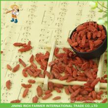 Nova colheita seca goji berry de 380 grãos por 50 gramas