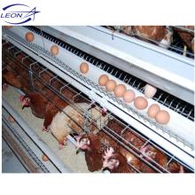 Equipamento para galinhas poedeiras da marca Leon / sistema automático de gaiolas para galinhas poedeiras