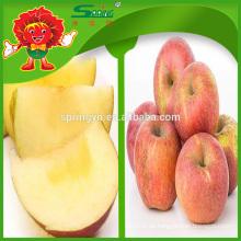 Apfel Fuji Honig Apfel aus China