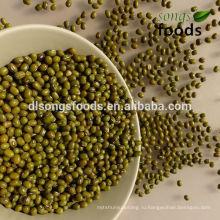 Все различные зеленые бобы с различными размерами