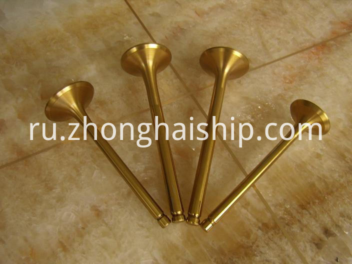 Engine Valve for Racing Car