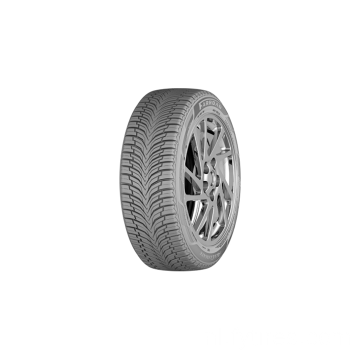 All Season All Climate Tire 225 / 45R17