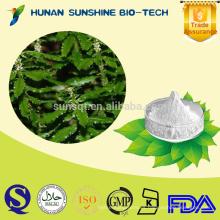 Polvo de extracto de huperzina A puro al 99% en polvo / 99% de polvo de extracto de serpentina Huperzia