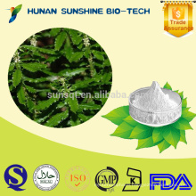 2015 New Certified Organic 99% Huperzine A Extract Powder / 99% Huperzine A P.E./ 99% Huperzine A Powder