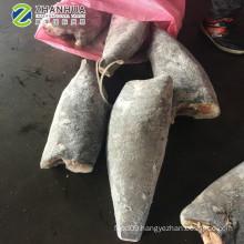 Super frozen RUVETTUS PRETIOSUS Oilfish HGT and Fillet