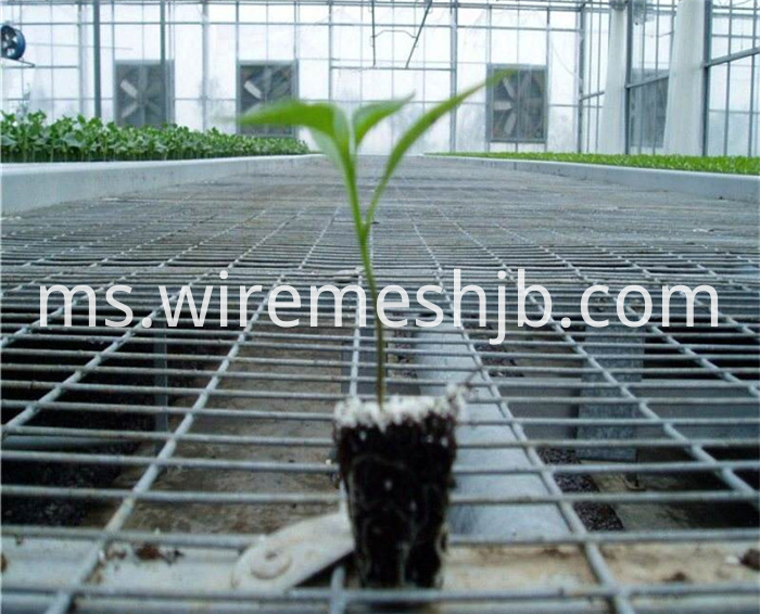 Greenhouse Seedling Bed Mesh
