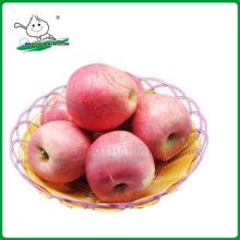 QINGUAN яблоко / свежие Qinguan Apple 9 кг