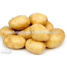 2014 Shandong new crop potatos in price (80-150g, 100-200g, 200g up)