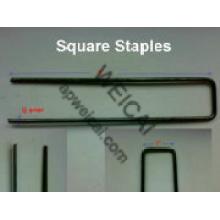 U Type SOD Staple for Landscape or Irrigation