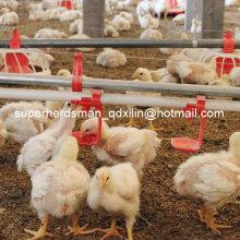 Équipement complet de volaille réglé par vente chaude pour la ferme de volaille