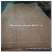 1200x2440 Vietnam Packing Plywood