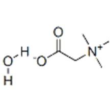 Bétaïne monohydratée CAS 590-47-6