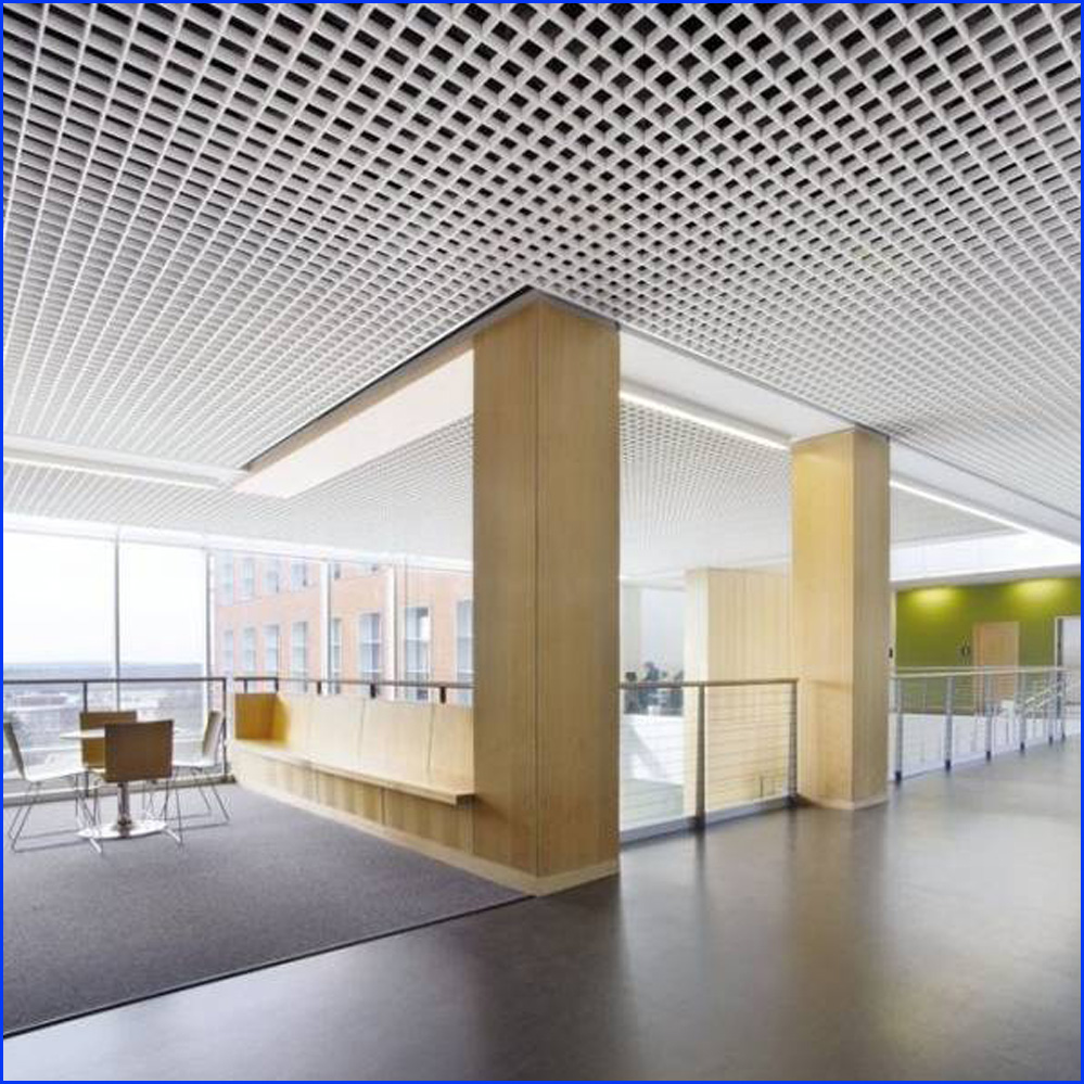 Steel Ceiling Grille