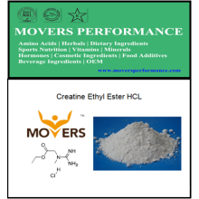 Creatine Ethyl Ester HCl con CAS No: 15366-32-2