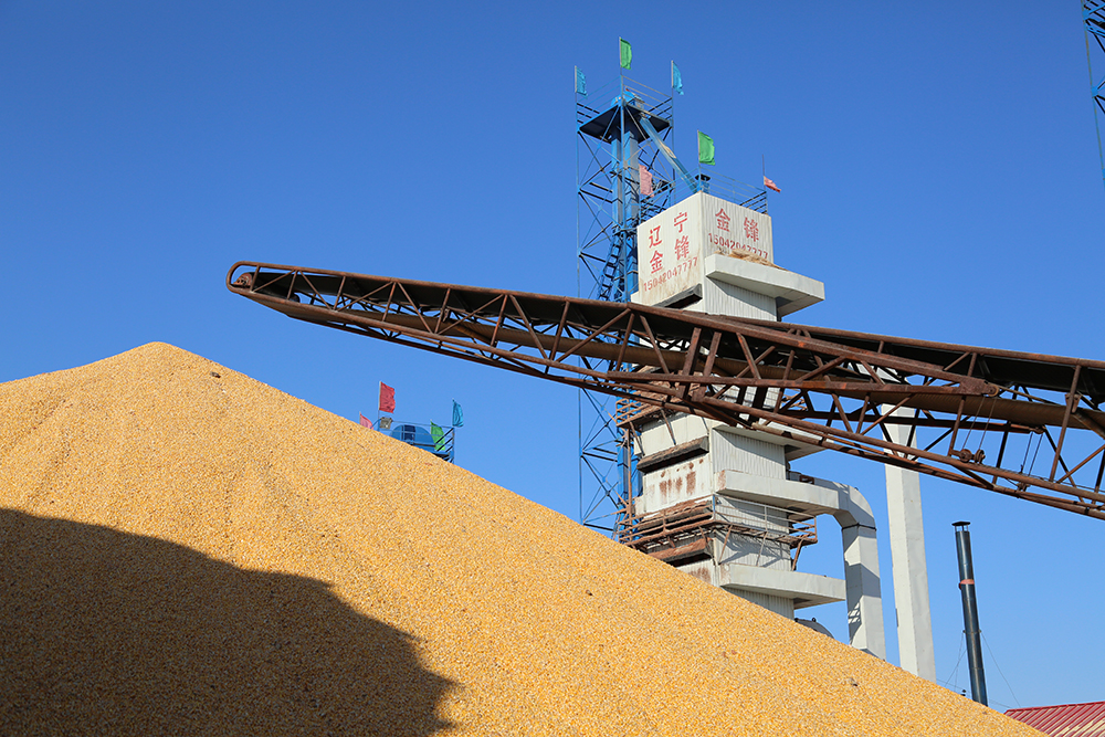Paddy Rice Drying Tower