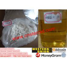 Polvo crudo de nandrolona Phenylpropionate fuente inyectable Npp Durabolin 100 mg