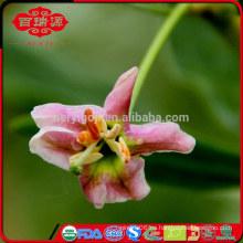 Nuevo cultivo de 2015 CRECES certificado orgánico goji berry