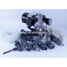 Good Quality for Pvc Head Mechanical Diaphragm Small Dosing Pump Diaphragm Injection pump export to Argentina Factory
