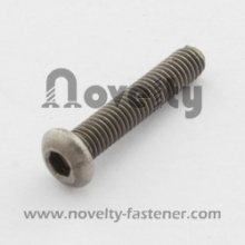 Pan Head Hex Socket Titanium Screw