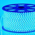 LED SMD 12V/24V LED Strip Light LED