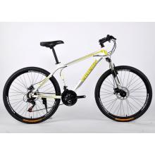 Bester Preis Aluminiumlegierung MTB Fahrrad (FP-MTB-A050)