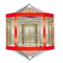 Fjzy Панорамным Дешевые Лифт-Ascensor2052