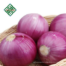 cheap price china fresh red onion wholesale