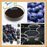 acai berry extract in herbal and fruit extract
