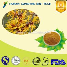 La mejor calidad de Hamamelis mollis PE polvo 10% Tanino