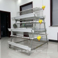 ISO certification fully automatic equipment special layer chicken cage