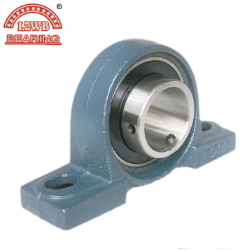 Competitive Price Pillow Block Bearing with Professional Equipments (UCPA202)
