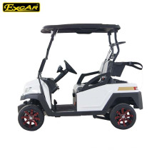 New Design 2 Seater Electric Golf Buggy for Golf Course