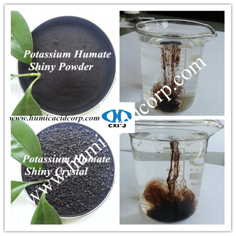 Potassium Humate Shiny Powder And Crystal