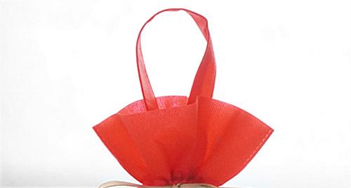 Chinese New Bag