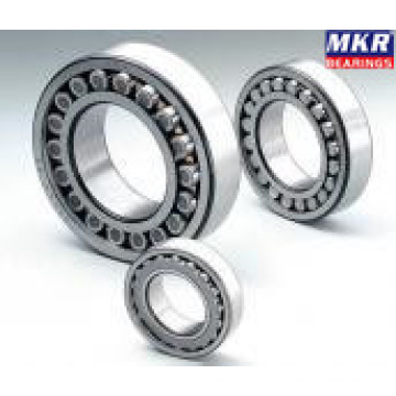 Spherical Roller Bearing 23160