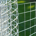 Wire Mesh Galvanized Welded Wire Mesh