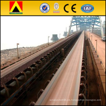 NN300 Bandas transportadoras General